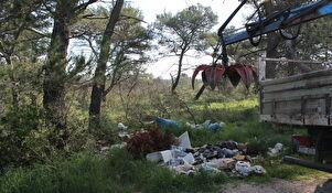 Očišćene šume u Diklu, Kožinu te na  Musapstanu